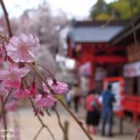 諏訪神社 ~ 小川町