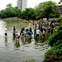 熊本市のボランティアで、水前寺公園に行ってきました。