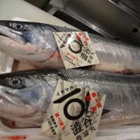 自家製「生ら(なまら)〆さば」・「生ら〆サンマ」・「真鱈の昆布〆」・「秋鮭(ルイベ)刺身」です!!刺身の専門店「発寒かねしげ鮮魚店」の魚屋しげ。