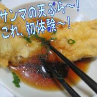 首長プチ恐竜ちゃん・・・プチ初出合い・・&王の餃子とカタ焼きそば&サンマの天ぷら