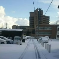 降り積もる雪 (出雲編)