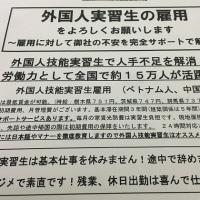 速報! 将棋 藤井四段28連勝 歴代1位タイ (毎日新聞)