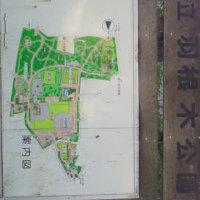 世田谷・羽根木公園『せたがや梅まつり』
