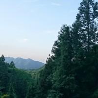 林道歩き~10キロコース