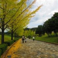 文殊山(60-13)&県森フェスタ