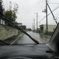 降り続く雨...
