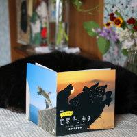 「世界ネコ歩き」のサウンドトラック♪