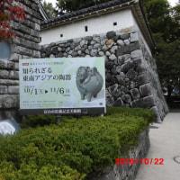 鳥取・福知山経由富山へ:その2