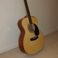 Zager EZ-Play Guitar ZAD 50 OM