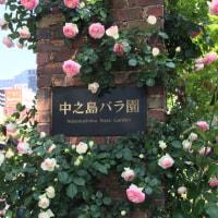 大阪中之島、バラ公園