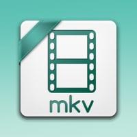 MKVとは何か?MKV意味、MKV特徴・メリット、MKV変換、MKV再生方法まとめ