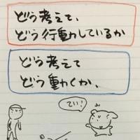 企画案・東大野球部のボール投げ行動学