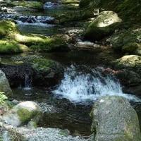 新緑の大滝と千石谷