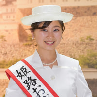 【速報・暫定版】「姫路お城の女王」信州夢街道フェスタ2017