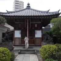 動坂から田端大竜寺へ