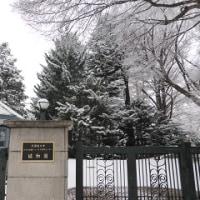 990 「札幌植物園、温室の小さな世界」