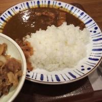 すき家 牛丼 中盛 と カレー 並