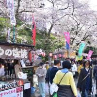 【桜巡りの旅】 吉野山 その7