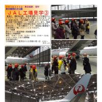 散策 「東京南西部-364」 JAL工場見学③