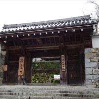 「三千院」/京都(2016晩秋)