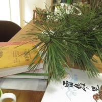 朝に実家に寄ったら庭師が松の枝を剪定