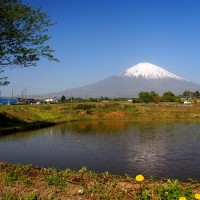 富士山が見える棚田・茶畑を巡る(静岡県・小山町の「一色の棚田」)