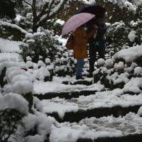 五百羅漢庭園(宮島大聖院)