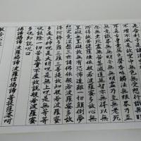 闘病日記4/24(火)・・・白い靴