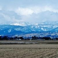立山連峰の上部は今日も雲に隠れ、雪がちらついた。白梅・紅梅が咲いている。