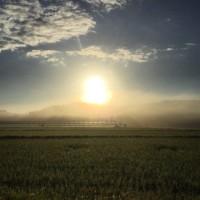 朝靄の朝陽