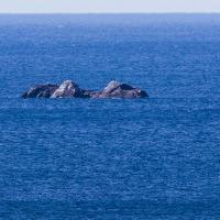 沖の石 Ⅱ