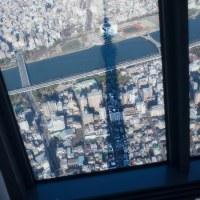 2017.01.03 スカイツリー: 展望デッキから見たスカイツリーの影
