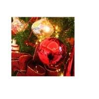 クリスマス ★ お空の天使わんこたち