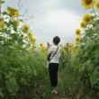 2017.7.16(日) 加古川上流 加東市の闘龍灘 & 小野市 ひまわりの丘公園