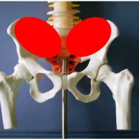 生理痛と骨盤の歪み
