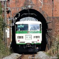 【鉄道写真】185系「ホリデー快速鎌倉」の回送列車