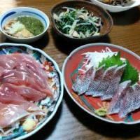 5月25日(木)鰹サラダ