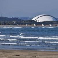 Vol.2019   青島から見える風景と日南の野鳥達  (Photo No.14043)