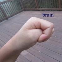 理解することで確かに子どもの言動に少し余裕を持って向き合えるようになる!「子どもの脳の3つの特徴」