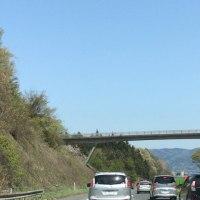 東北道渋滞