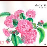 花ビラがまるで桜貝のような八重椿