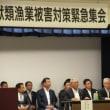 北海道日本海沿岸トド等海獣漁業被害対策緊急集会
