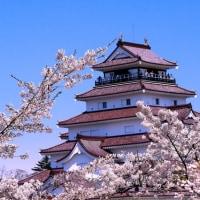 鶴ヶ城の桜と雄大な会津磐梯山  (会津若松)