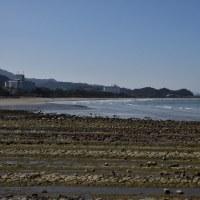 青島にある二つの大きなホテルからの眺めも最高ですよ。 (Photo No.14042)