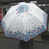 傘あります!