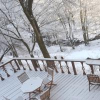 白い森が輝く朝、自由農園生産者の会に参加して諏訪の観光について考える。