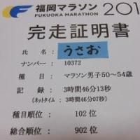 日記0124:福岡マラソン2016の結果