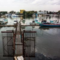 旧江戸川の廃船