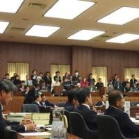 憲法審査会開始(傍聴記)