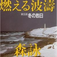 森詠著『燃える波濤第5部 冬の烈日』